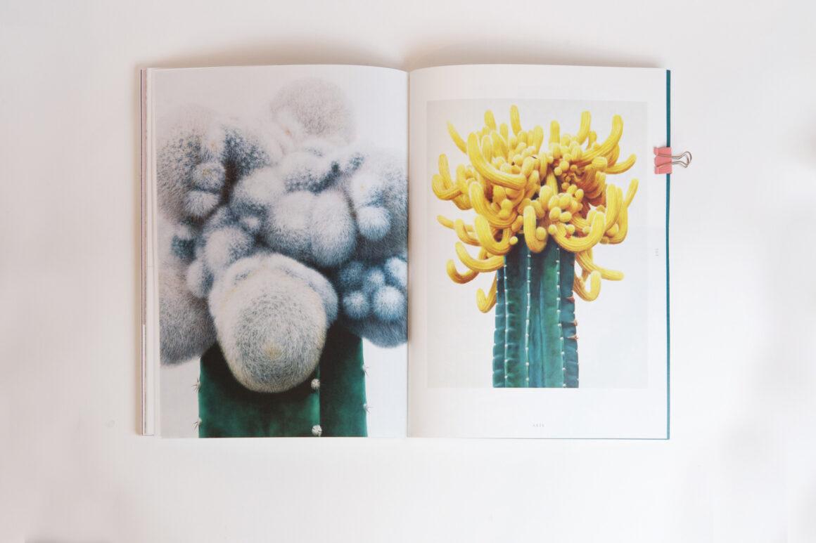 Herbaria. Il numero zero del magazine per gli amanti delle piante